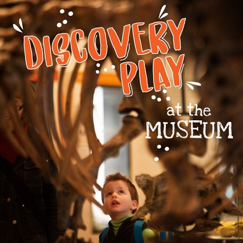 Discovery-Play-2020-Website-Pic.jpg