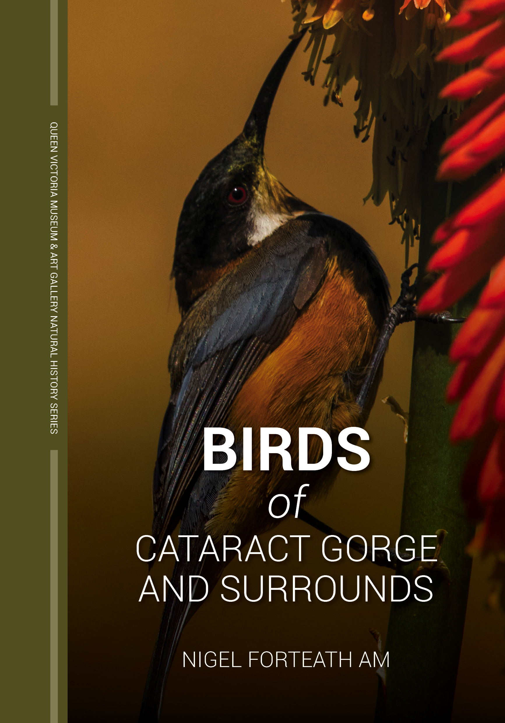 Birds of Cateract Gorge cover.jpg